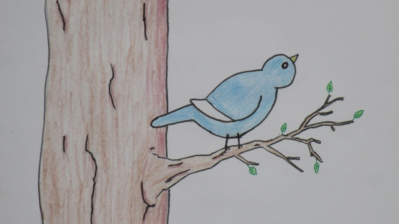 Draw A Simple Bird On Tree Youtube