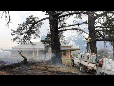 One dead in emergency Adelaide Hills blaze