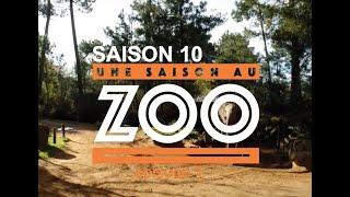 Une Saison au Zoo S10 - Ep 01