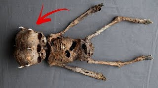5 Creatures People Thought Were Fake, But Aren't