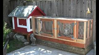How To Build A Chicken Coop Cheap - Free Chicken Coop Building Guide