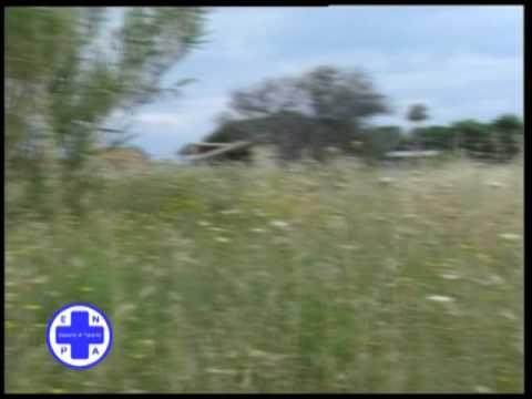 ENPA TARANTO SPOT TV