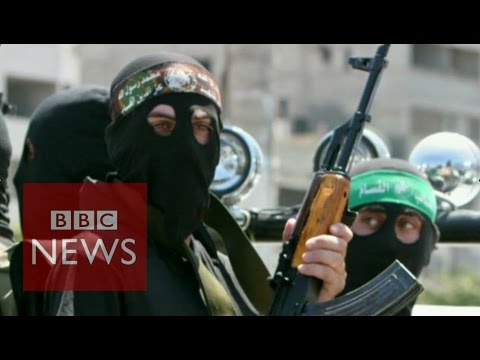 Palestinians 'killed, tortured by Hamas' says Amnesty ...