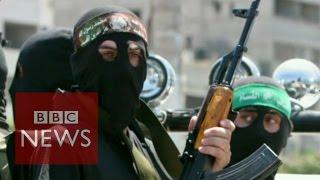 Palestinians 'killed, tortured by Hamas' says Amnesty International - BBC News