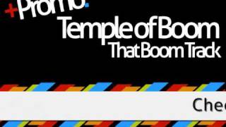 Temple of Boom - That Boom Track (Liam Vizzle Remix) | Venga Digital | Out Soon