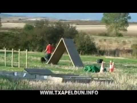 Txapeldun Club de Adiestramiento - Langarika