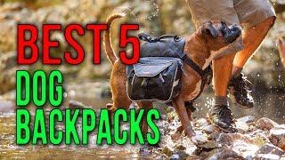BEST 5: Dog Backpacks