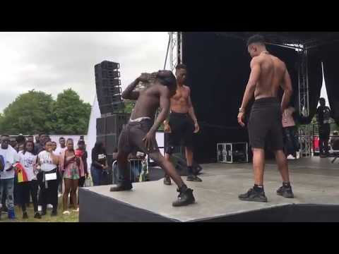 Best performance at Ghana party in the park 2017!!
