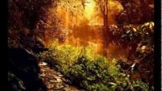 Yiruma 이루마   87 Song Golden Collection