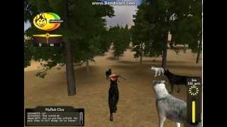 WolfQuest Multiplayer Randomnes ~ Fighting Bear and Hunting Bull Elk