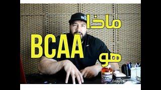 ما هي الأحماض الامينية BCAA