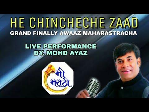 हे चींचेचे झाड || SONG BY - मोहम्मद अयाज़ || Mohd Ayaz Music ||