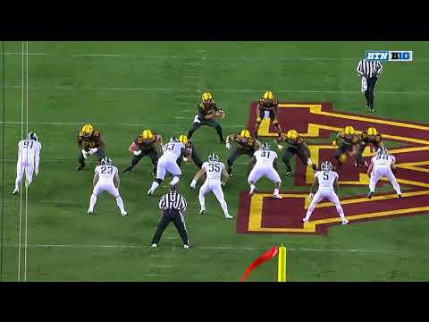 MSU v Minnesota Tight Cut