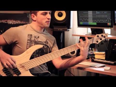Periphery -  'Feed The Ground' - Bass Cover using Darkglass Electronics B7K and Dingwall ABZ