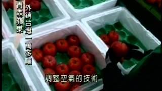 台灣農產豐富,但礙於氣候,蘋果產量相當有限,因此市面上賣的蘋果大部...