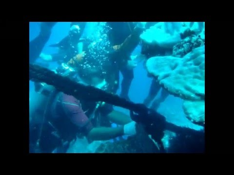 Verde Island Passage Project of Batangas CRM Foundation & Malampaya Foundation, Inc.
