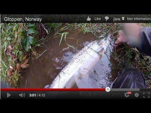 Gloppen, Norway