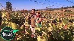 Top 10 Best California Wineries to Visit in 2019