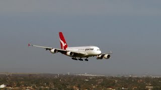Qantas Skillful A380 Landing in 100 km per hour winds at Melbourne Airport. Treacherous Conditions. thumbnail