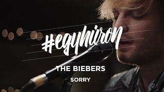 The Biebers: Sorry #egyhúron a VIVA-n