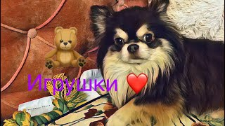 Игрушки Барни/#Собака/Animals Key