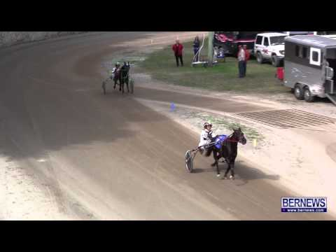 Harness Pony Racing, Feb 10 2013
