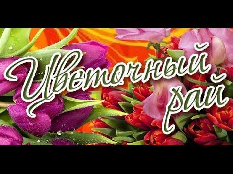 Скачать Игру Цветочный Рай Торрент Бесплатно - фото 3