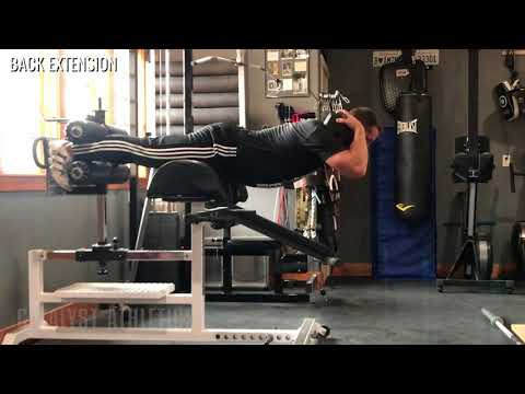 Back Extension - Olympic Weightlifting Exercise Library - Catalyst Athletics