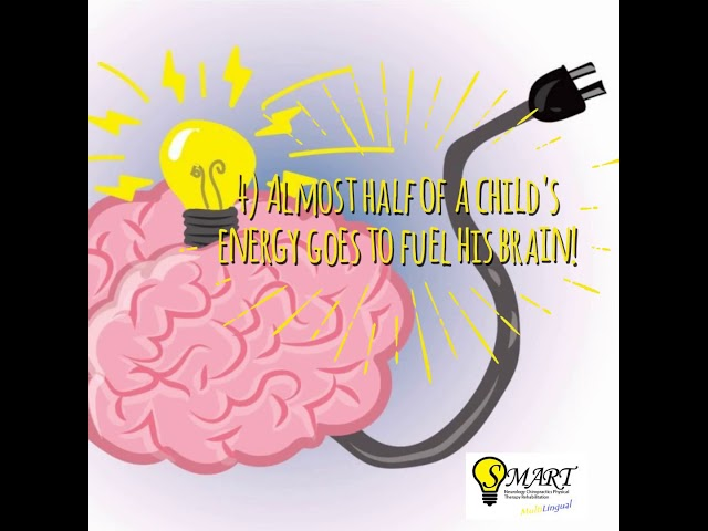 Fun Facts About Your Brain