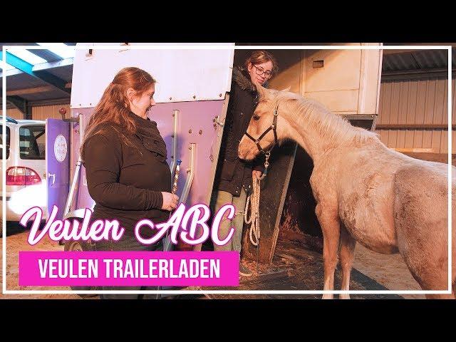 VeulenABC - Voor het eerst trailerladen met een veulen!