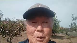 실곡농원 꽈배기 진 농장소개