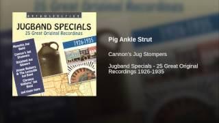 Pig Ankle Strut