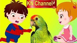 BÉ NA VỚI TẤM LÒNG THƯƠNG YÊU ĐỘNG VẬT | KN Channel  Hoạt hình Việt Nam | GIÁO DỤC MẦM NON