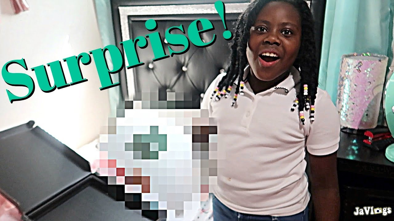 a-surprise-for-niyah-family-vlogs-javlogs