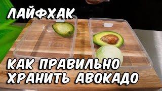 Лайфхак | Как правильно хранить авокадо