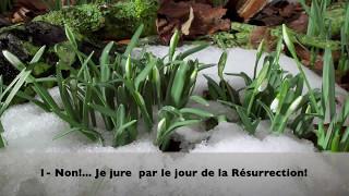 sourat al qiyamah 75 la résurrection sous titré en français