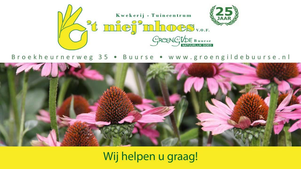 GroenGilde