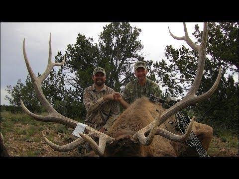 Arizona Archery Elk Hunt - Watch Two Bulls Go Down
