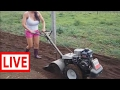 Primitive Technology vs World Amazing Modern Agriculture Progress Mega Machines Farming Equipm #PAJ