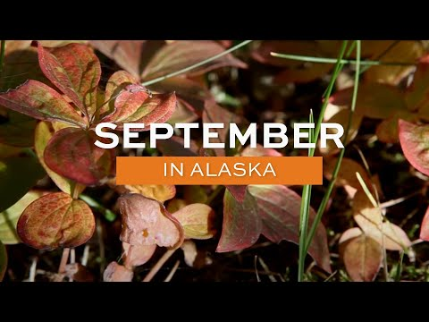 Alaska.org - September in Alaska