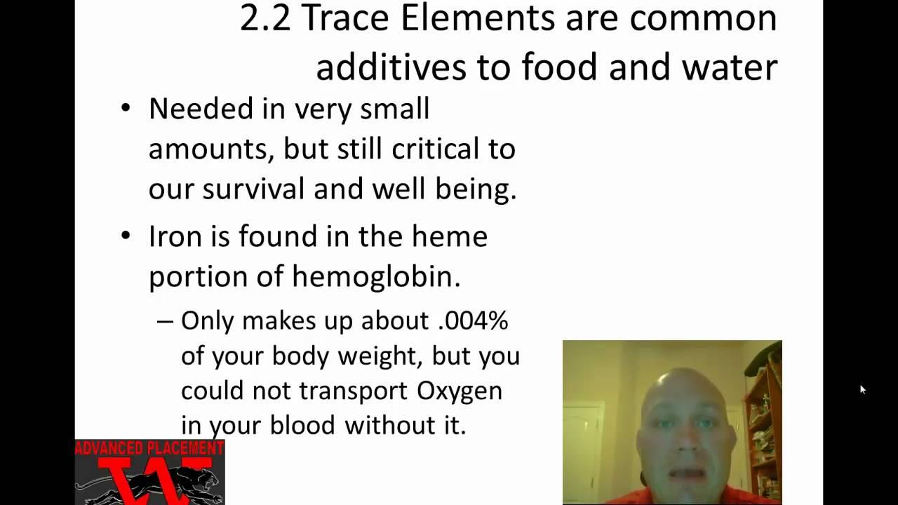 High School Biology/Chemical Basis of Life