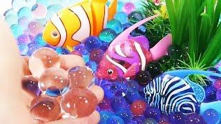 Аквариум для рыбок. Как сделать? Обучающие и развивающие мультики, обзоры детских игрушек