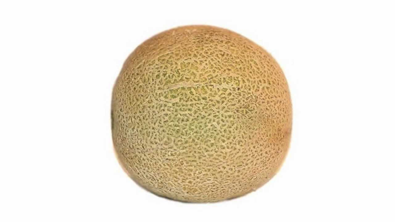 Cantaloupe Asl American Sign Language Youtube If you've been wondering whether cantaloupes are too sweet to be good for you, you'll be happy to learn that these muskmelons provide several. cantaloupe asl american sign language