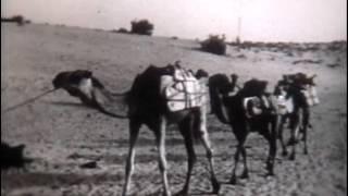 Гео, Африка, Пустыни и полупустыни Северной Африки(География, Африка «Пустыни и полупустыни Северной Африки» «Школфильм» 1971г. (00:09:07 чёрно-белый) В фильм показ..., 2015-12-24T16:36:46.000Z)