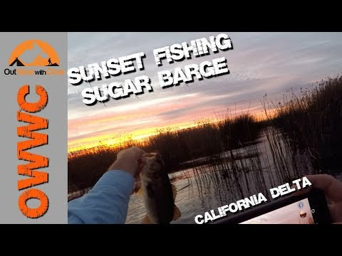 Sunset Fishing On The Delta - Sugar Barge