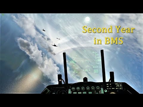 Second year in Falcon 4 BMS !