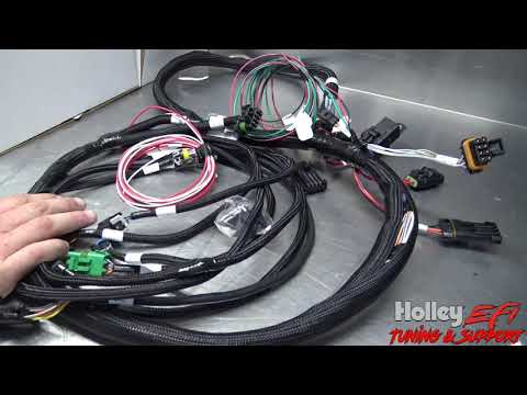 The New Holley Efi Terminator X For Your Fox Body Mustang