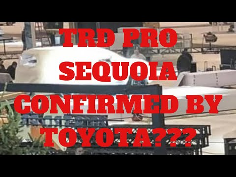 NOW..WHAT COLORS ARE THE 2020 TRD PROS??