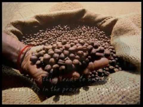 Coffee Board of India : Coffee Karma