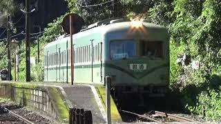 【秘境駅に電車が到着!】大井川鐵道 南海21000系 普通千頭行き 神尾駅